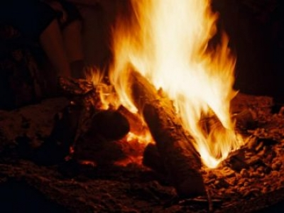 Bushcraft and Survival - 4 Hour Course