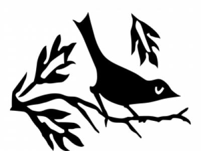 Blackbird Arts: Hands on Arts Tuition