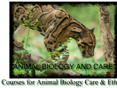 Animal Biology and Care Education: animal biology and care courses biology tuition
